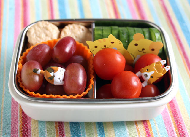 Dog and Cat Bento Snack