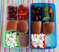 Twinsies Fit & Fresh Lunches