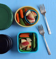 Twin Thermos Day Camp Lunches